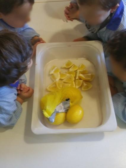 naranja y limon (1)