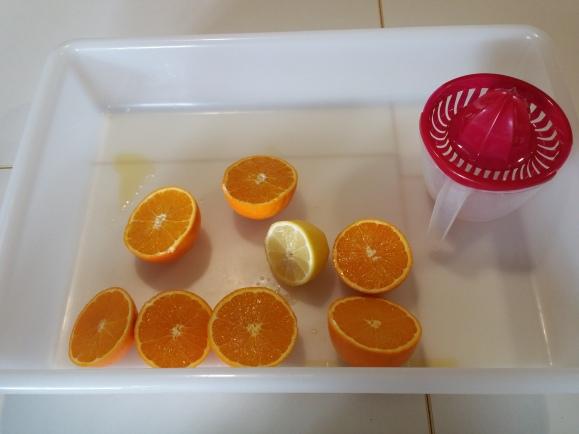 naranja y limon (4)
