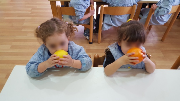 naranja y limon (9)