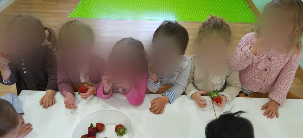 fresas (11)