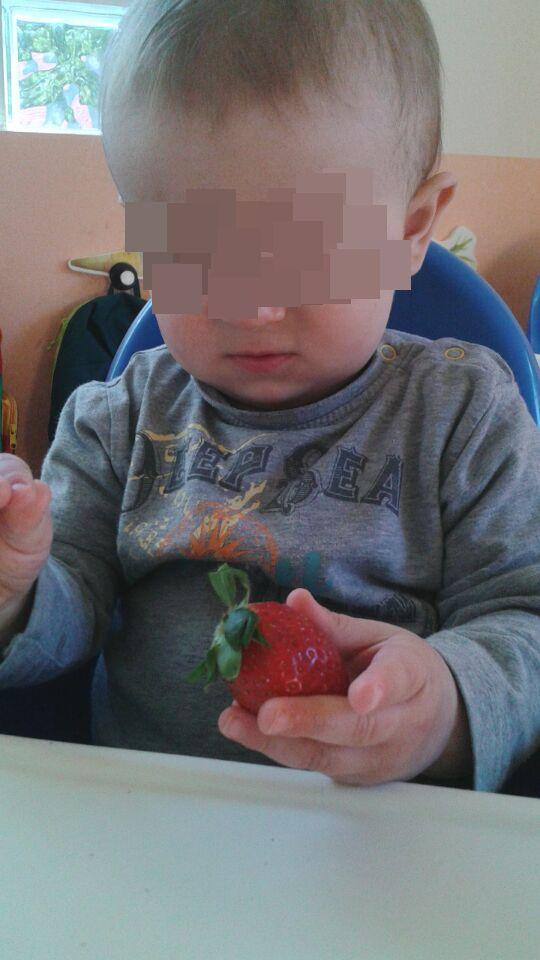fresas (3)