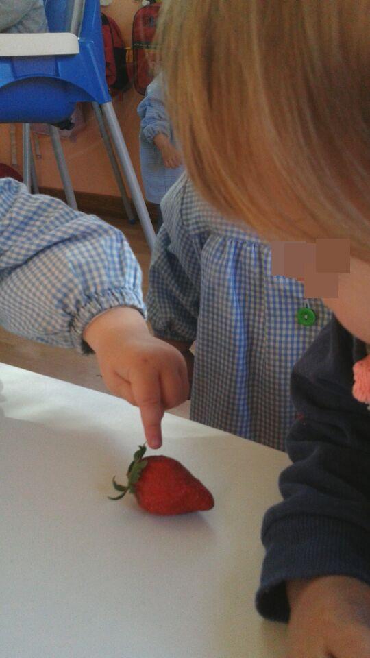 fresas (4)