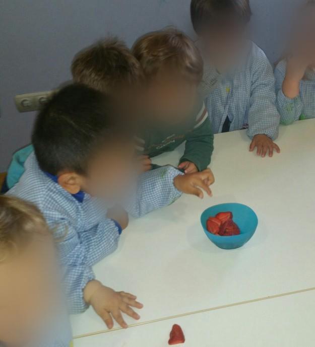 fresas (7)